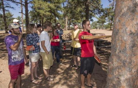 Students learn how to take core samples from trees for dendroclimatic research.